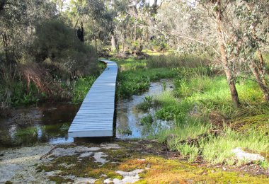 Boardwalks across our winter stream